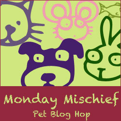 87b9a-bloghop