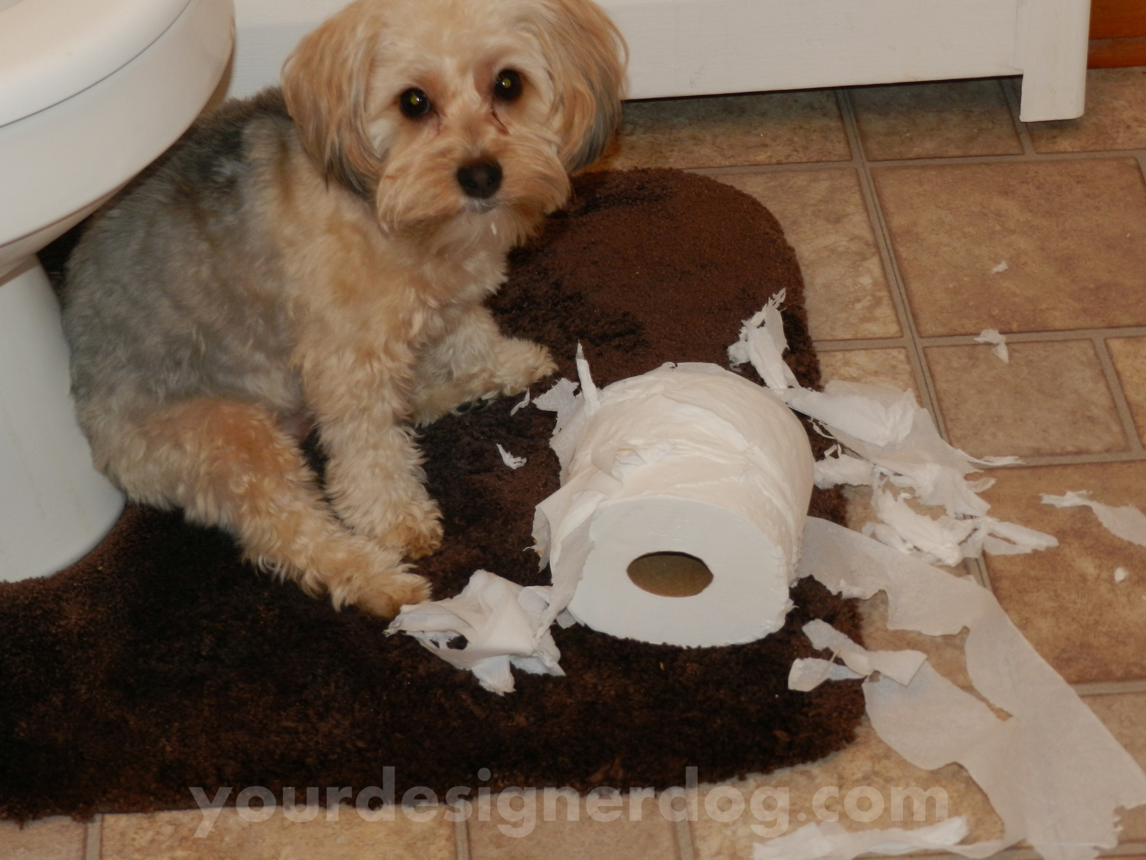 The Temptation of TP