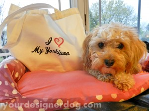 dogs, designer dogs, yorkipoo, yorkie poo, tote bag, i love my dog, yourdesignerdog