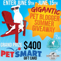 dogs, pets, contest, giveaway