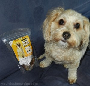 designer dogs, yorkipoo, yorkie poo, dog treats, bully sticks