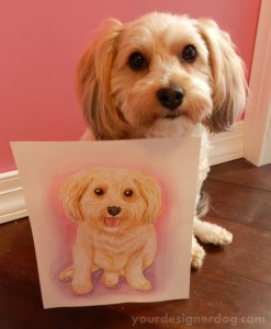 dogs, designer dogs, yorkipoo, yorkie poo, portrait, watercolor