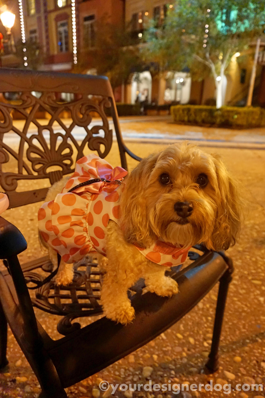 Outdoor Dining Mischief