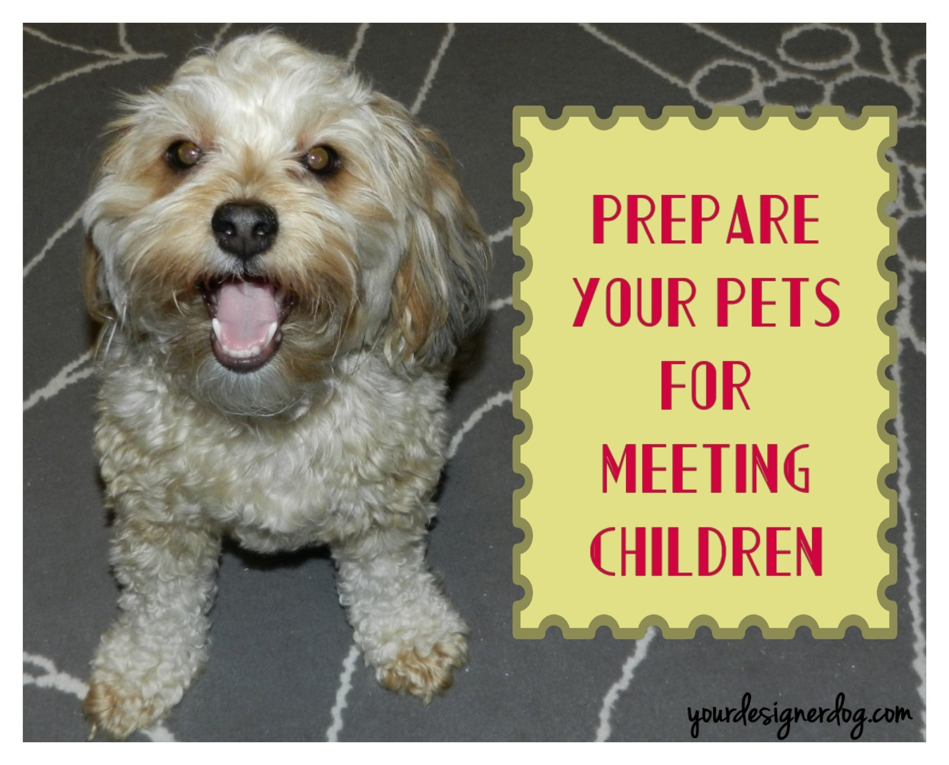 Preparing Your Pets For Meeting Children