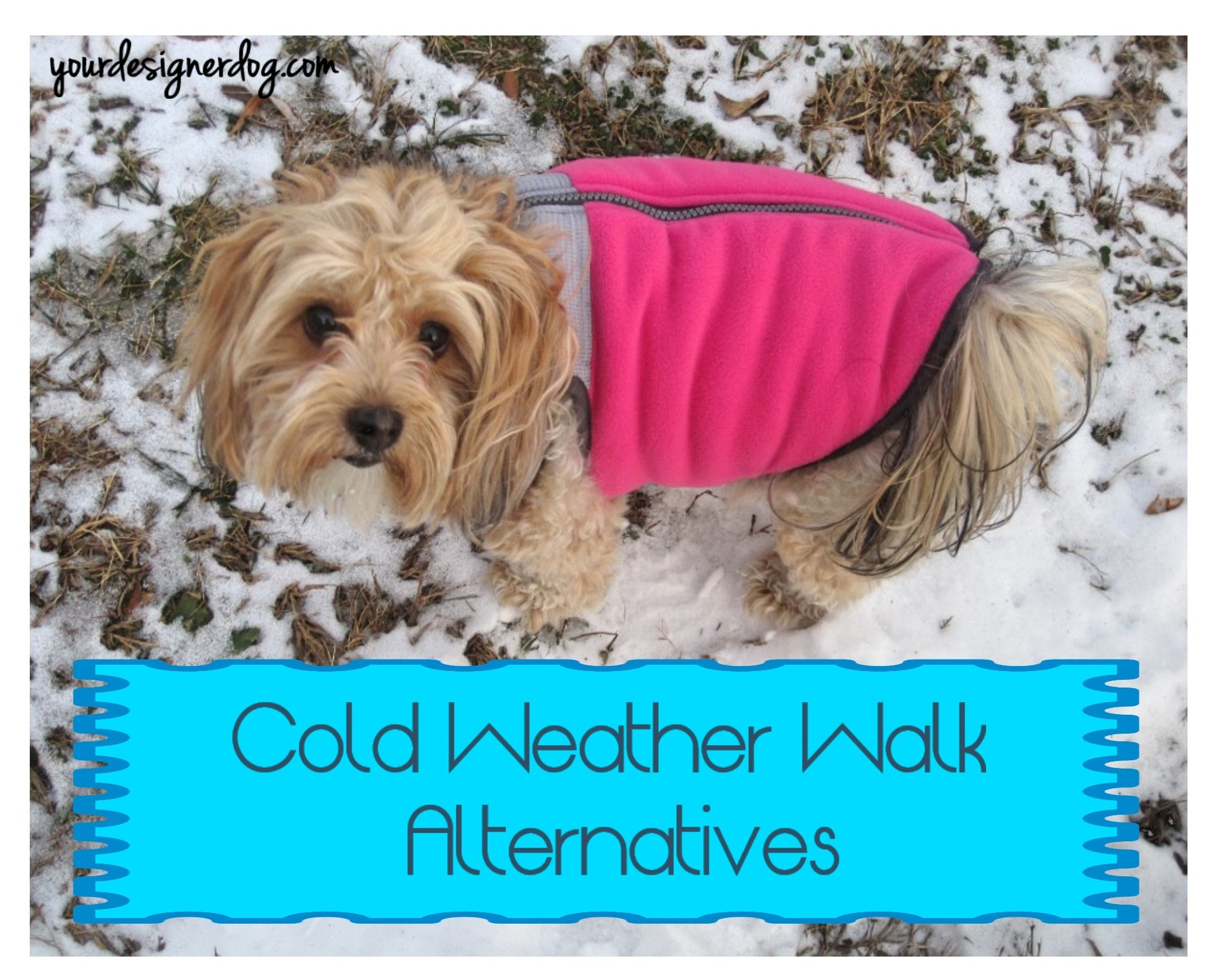Cold Weather Walk Alternatives