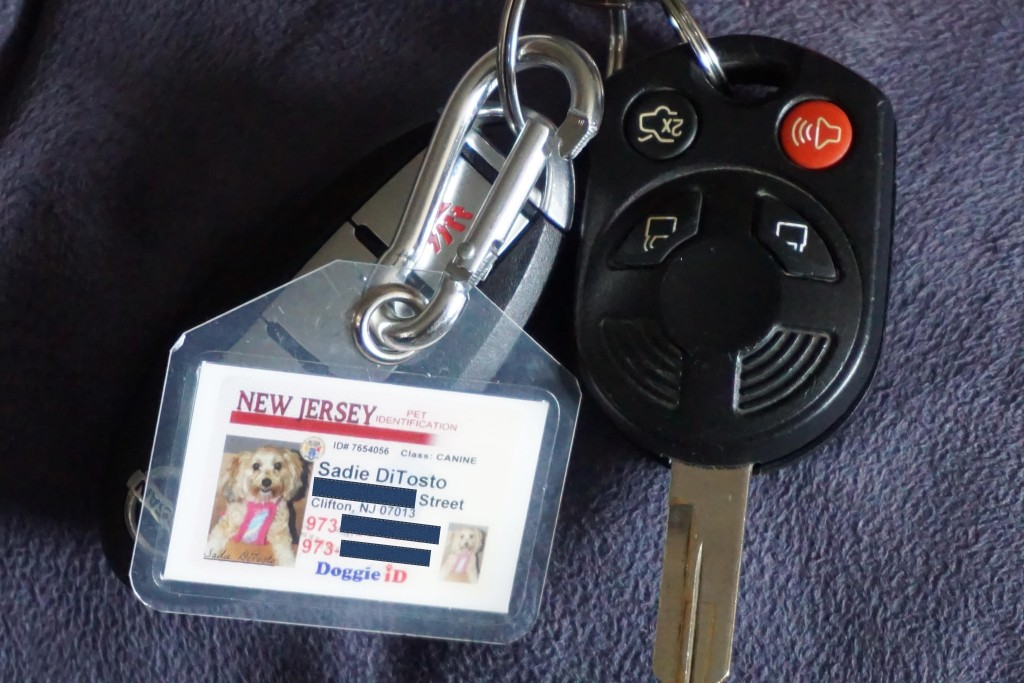 car keys, id tag, dog tag, driver's license