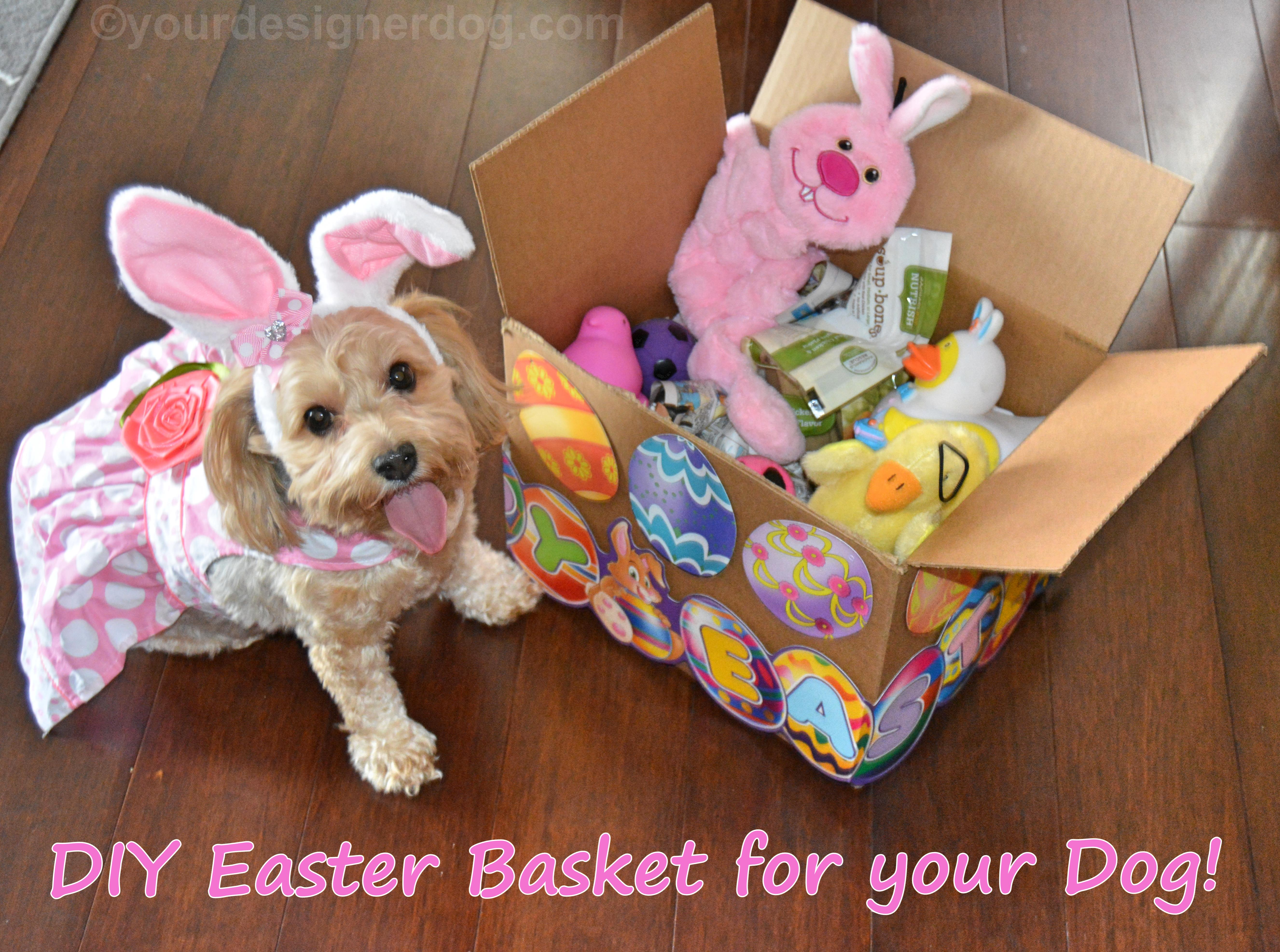 A DIY Easter Basket Your Dog Will Love!