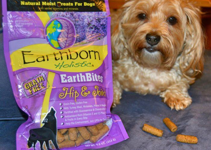 dogs, designer dogs, Yorkipoo, yorkie poo, dog teeats, holistic, EarthBites