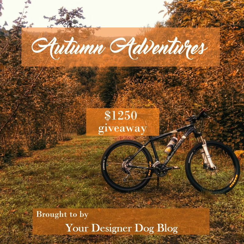 giveaway, contest, autumn, adventure, fall
