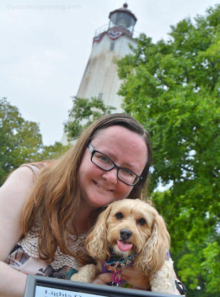 dogs, designer dogs, Yorkipoo, yorkie poo, lighthouse, hug