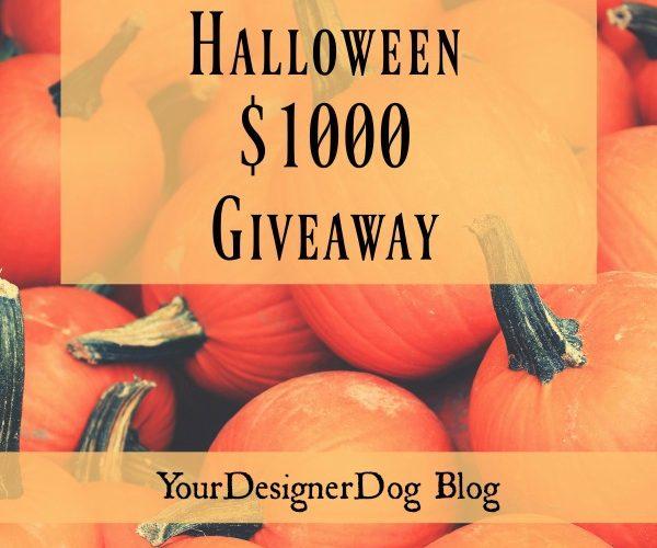 halloween, giveaway, win, cash