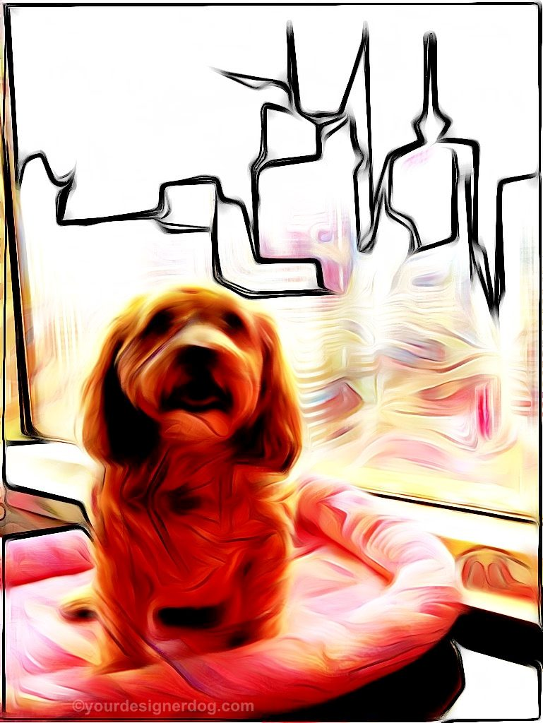 dogs, designer dogs, digital art, abstract art, pet portrait, skyline, new york city