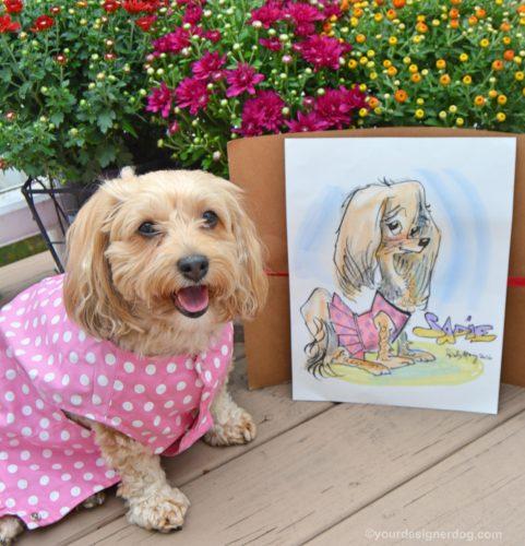 dogs, designer dogs, Yorkipoo, yorkie poo, pet portrait, caricature, cartoon, caturday art
