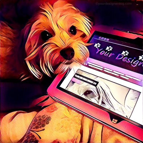 dogs, designer dogs, Yorkipoo, yorkie poo, computer, tablet, blog, digital art, pet portrait
