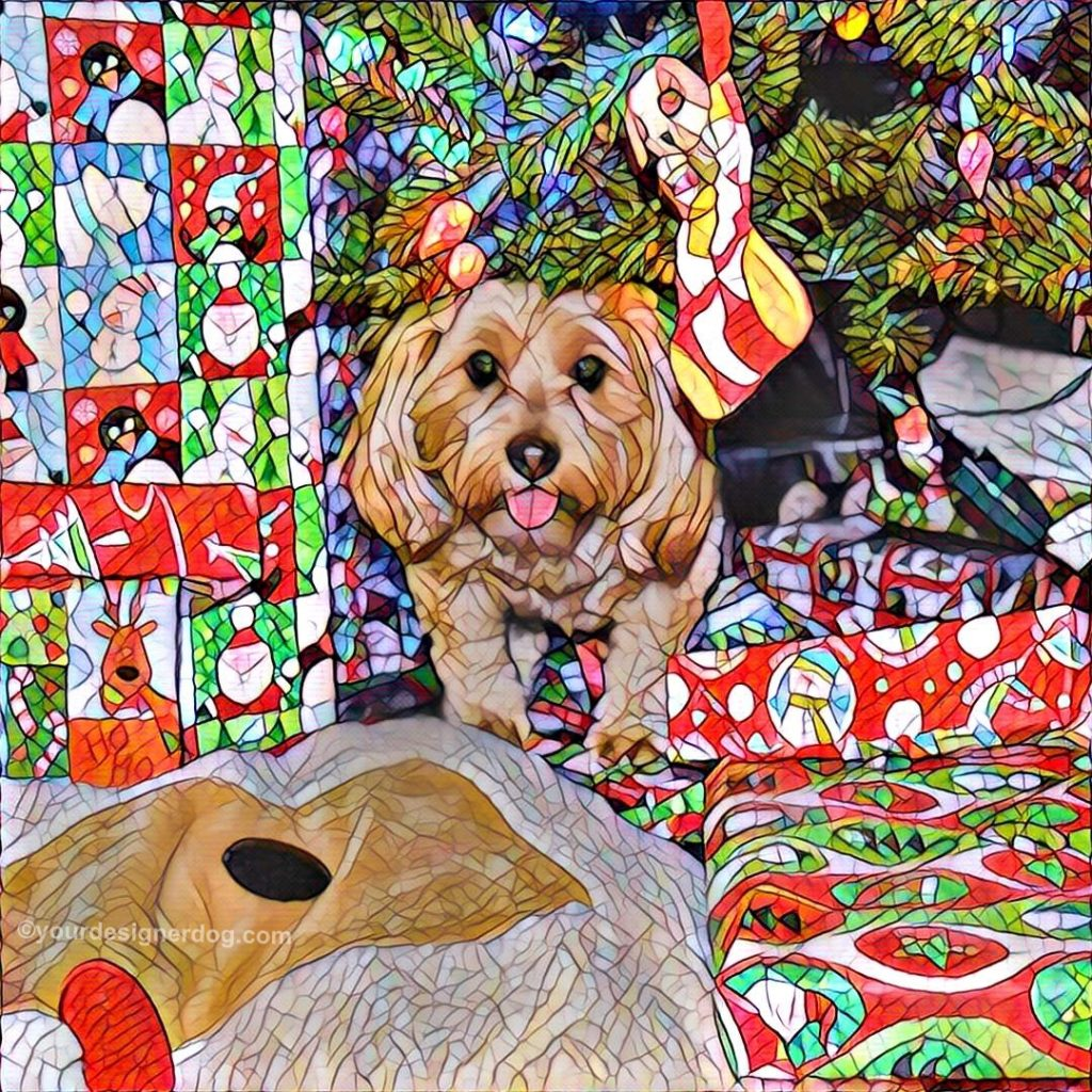 dogs, designer dogs, Yorkipoo, yorkie poo, digital art, pet portrait, Christmas, Christmas Tree