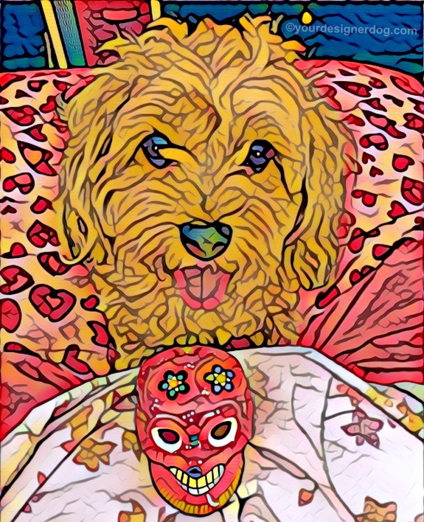 dogs, designer dogs, Yorkipoo, yorkie poo, digital art, pet portrait, sugar skull