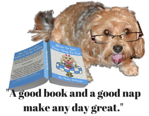 dogs, designer dogs, yorkipoo, yorkie poo, how to get your dog to eat, dogs with glasses, book