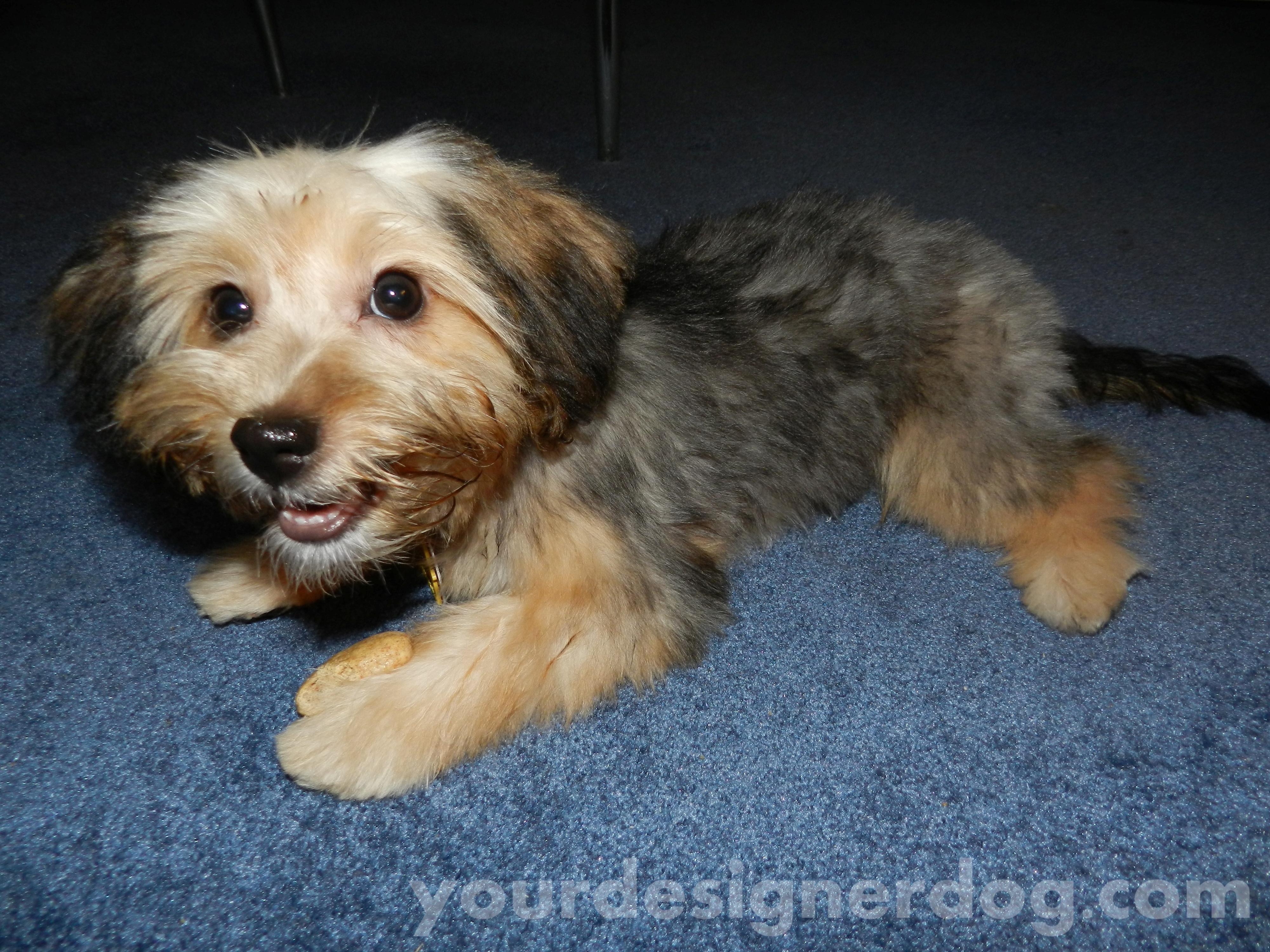 Sadie's First Haircut – #RecipeForMoments – Flashback Friday #2