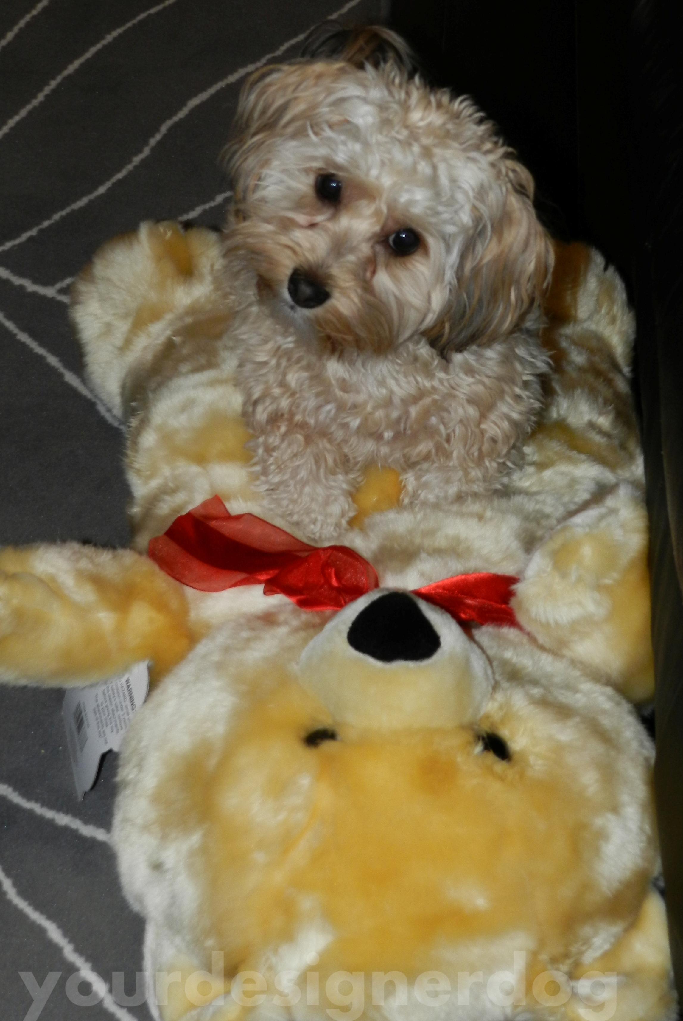 Teddy Bear Tackle