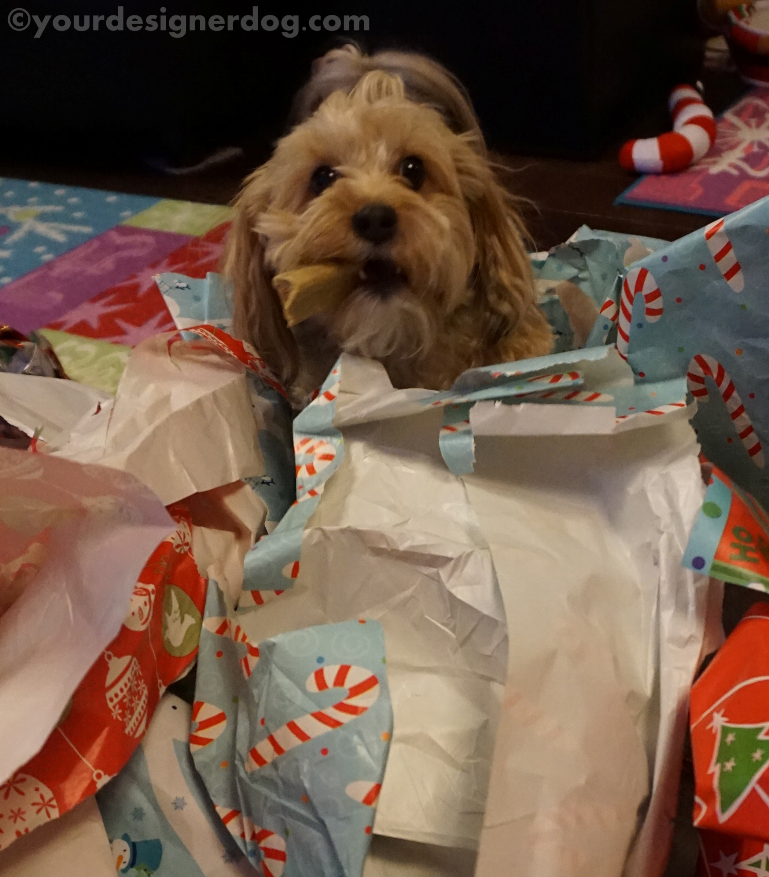 A New Use For Old Wrapping Paper