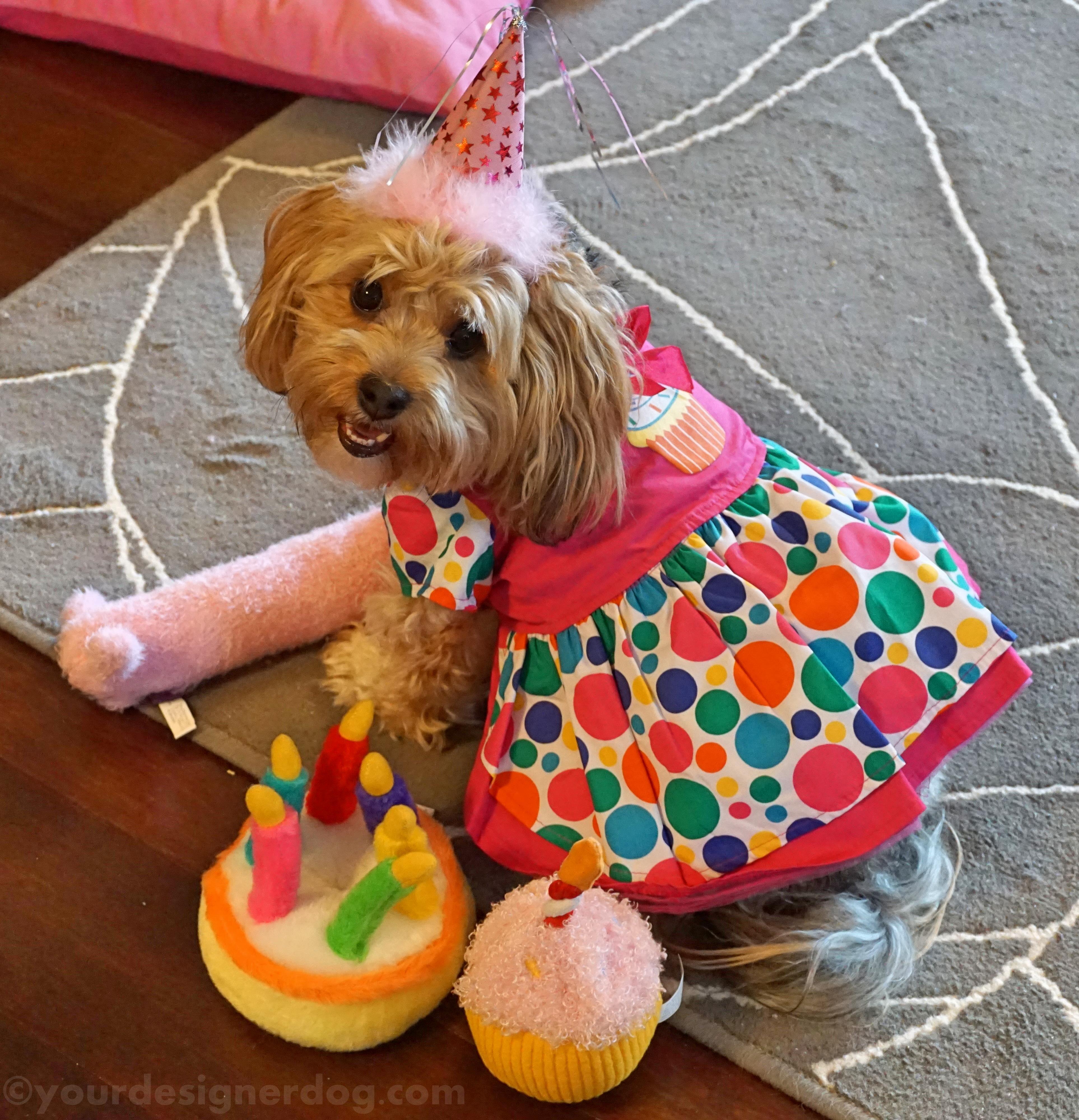 It's Sadie's Third Birthday!