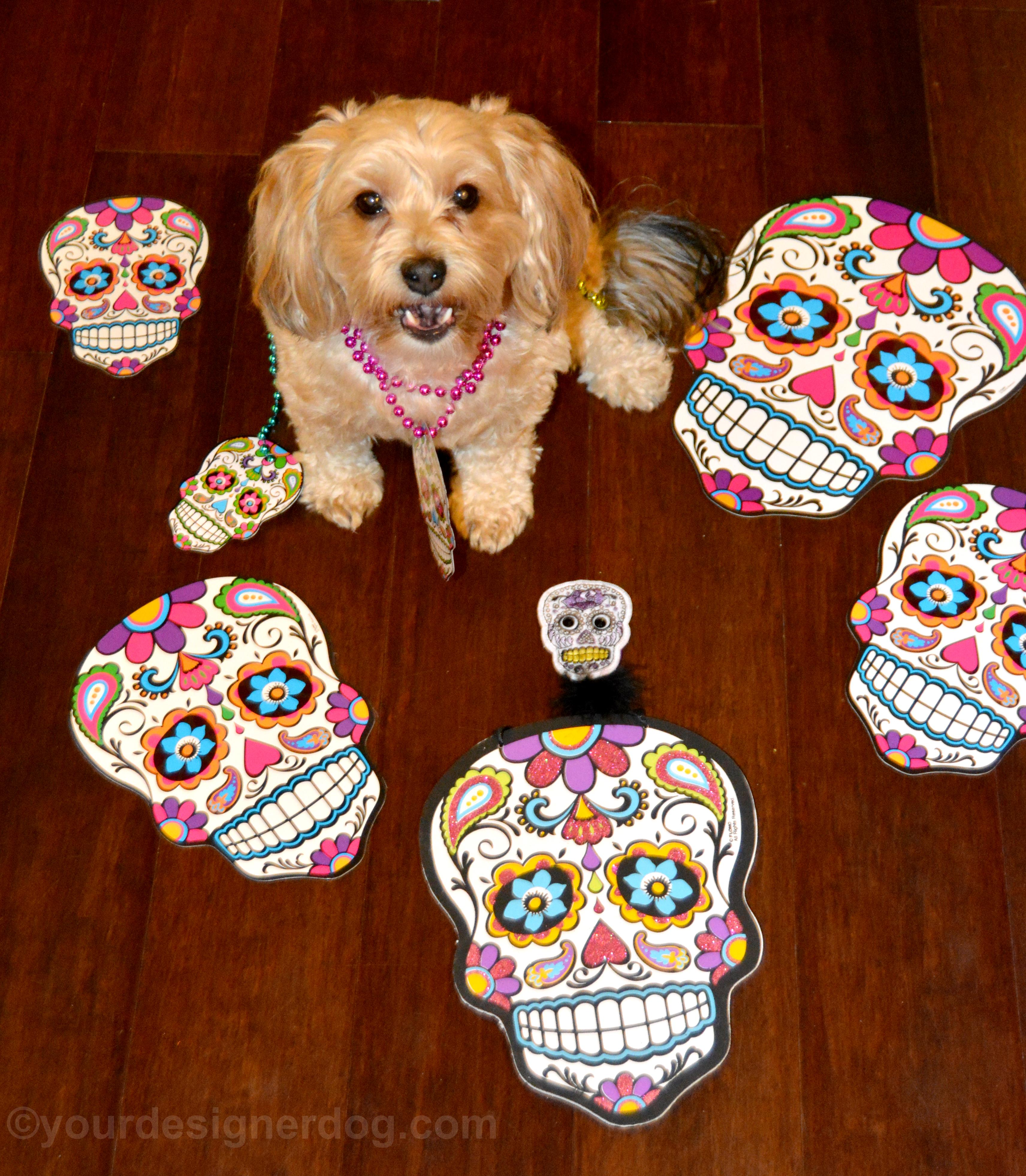Honoring the Day of the Dead