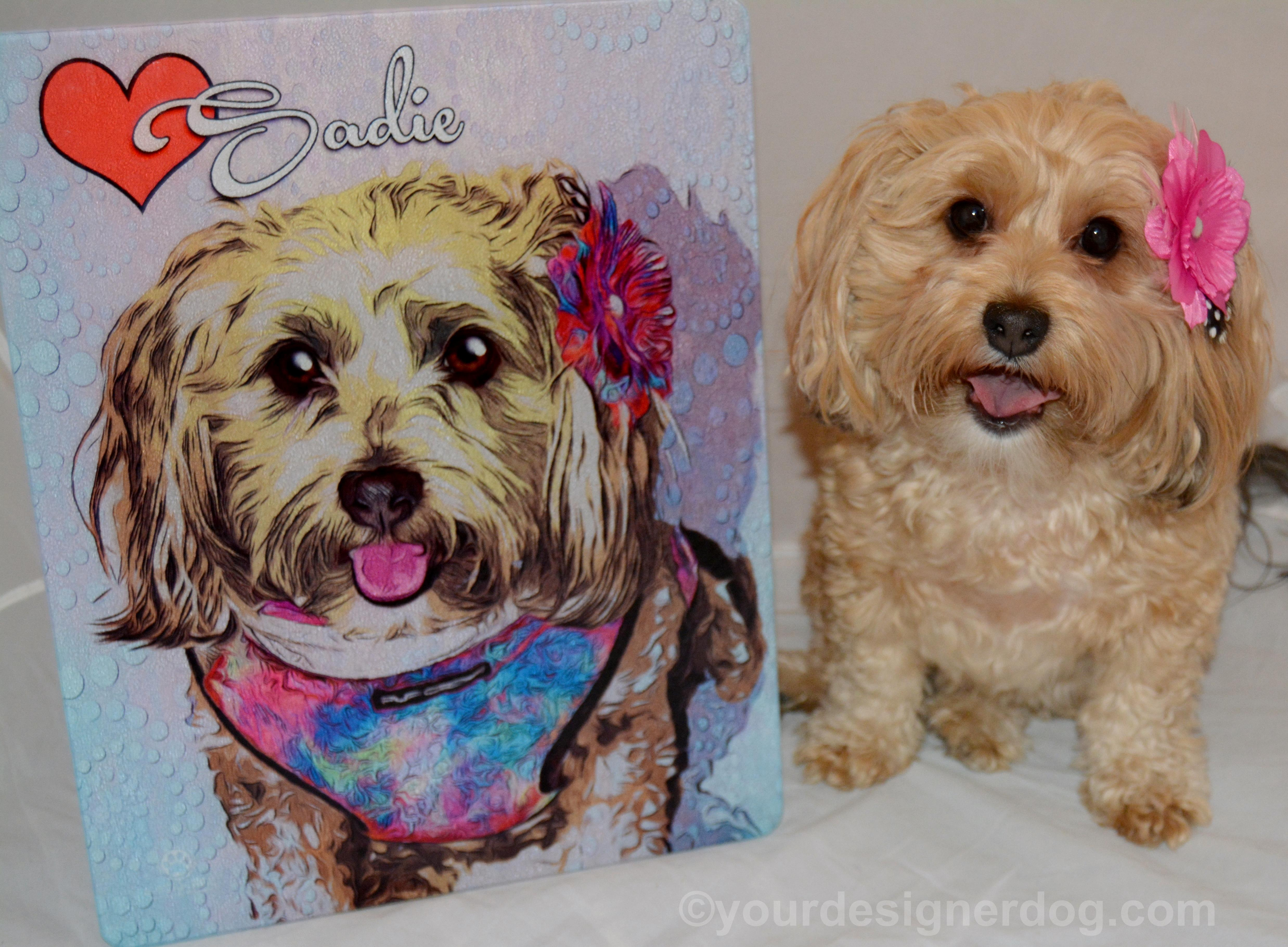 Custom Portraits, Charity Donations, and More at Andy's Paw Prints