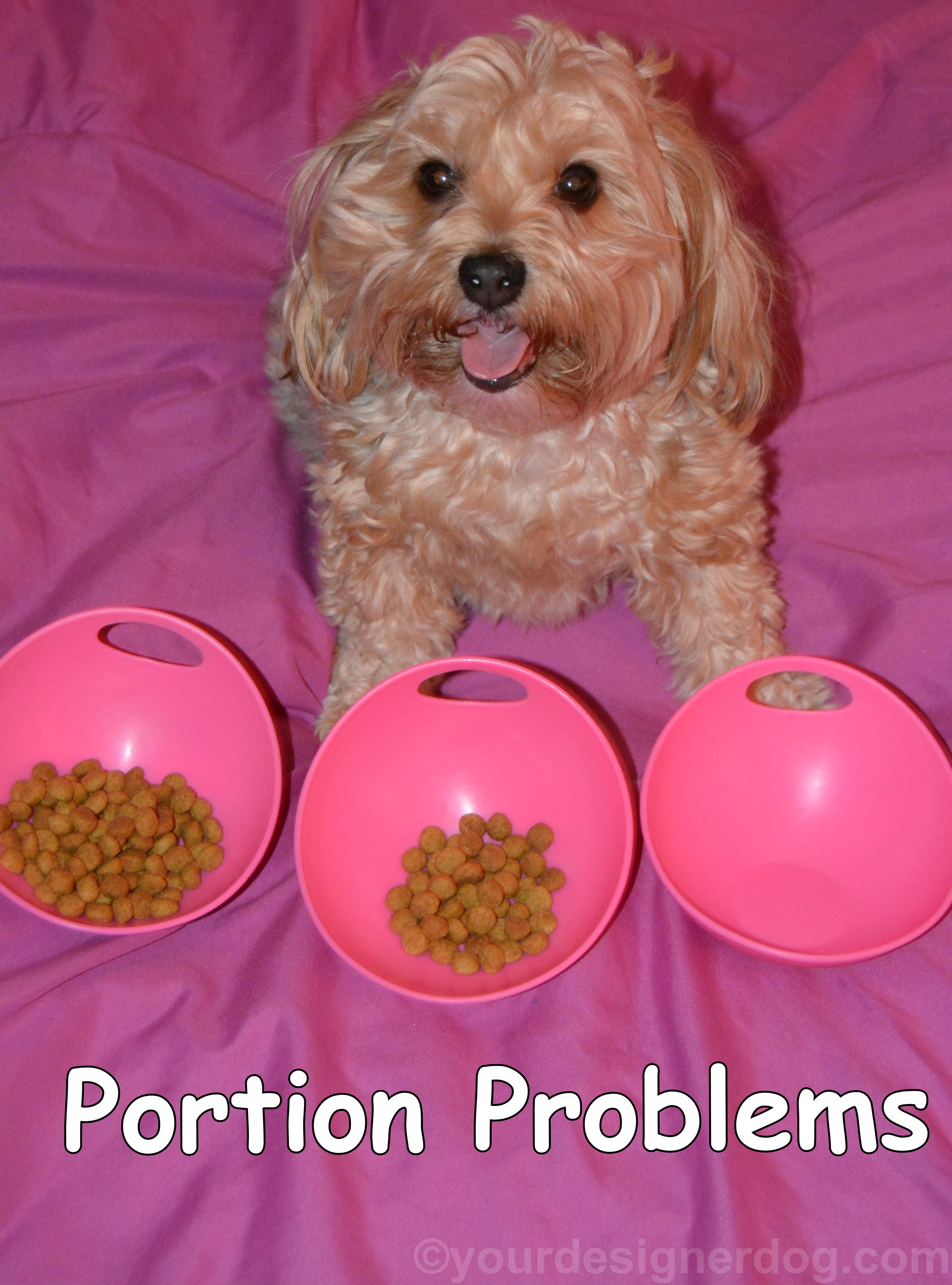 Portion Problems