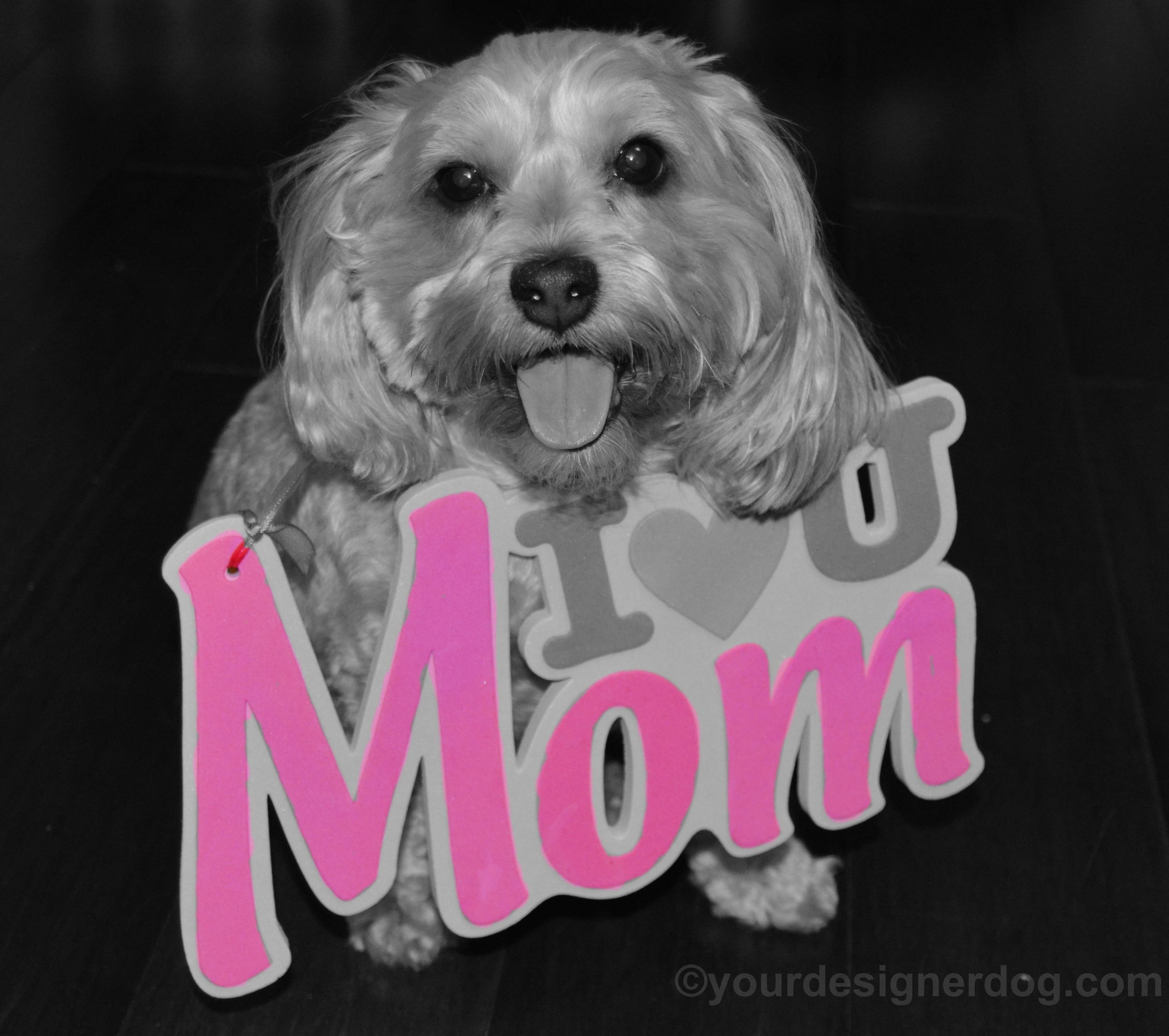 Happy Mother's Day 2016!