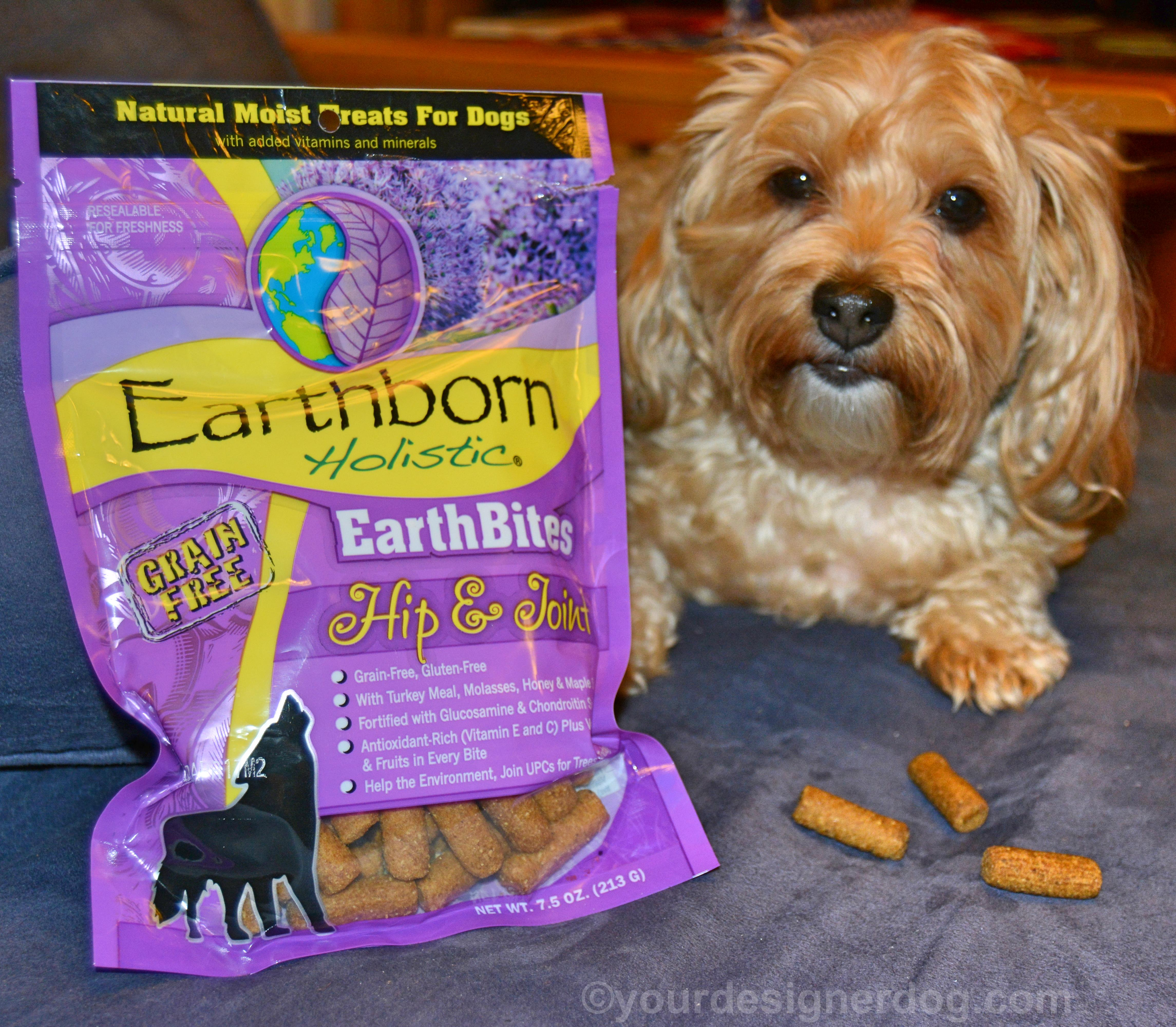 EarthBites – Holistic Treats with Added Benefits