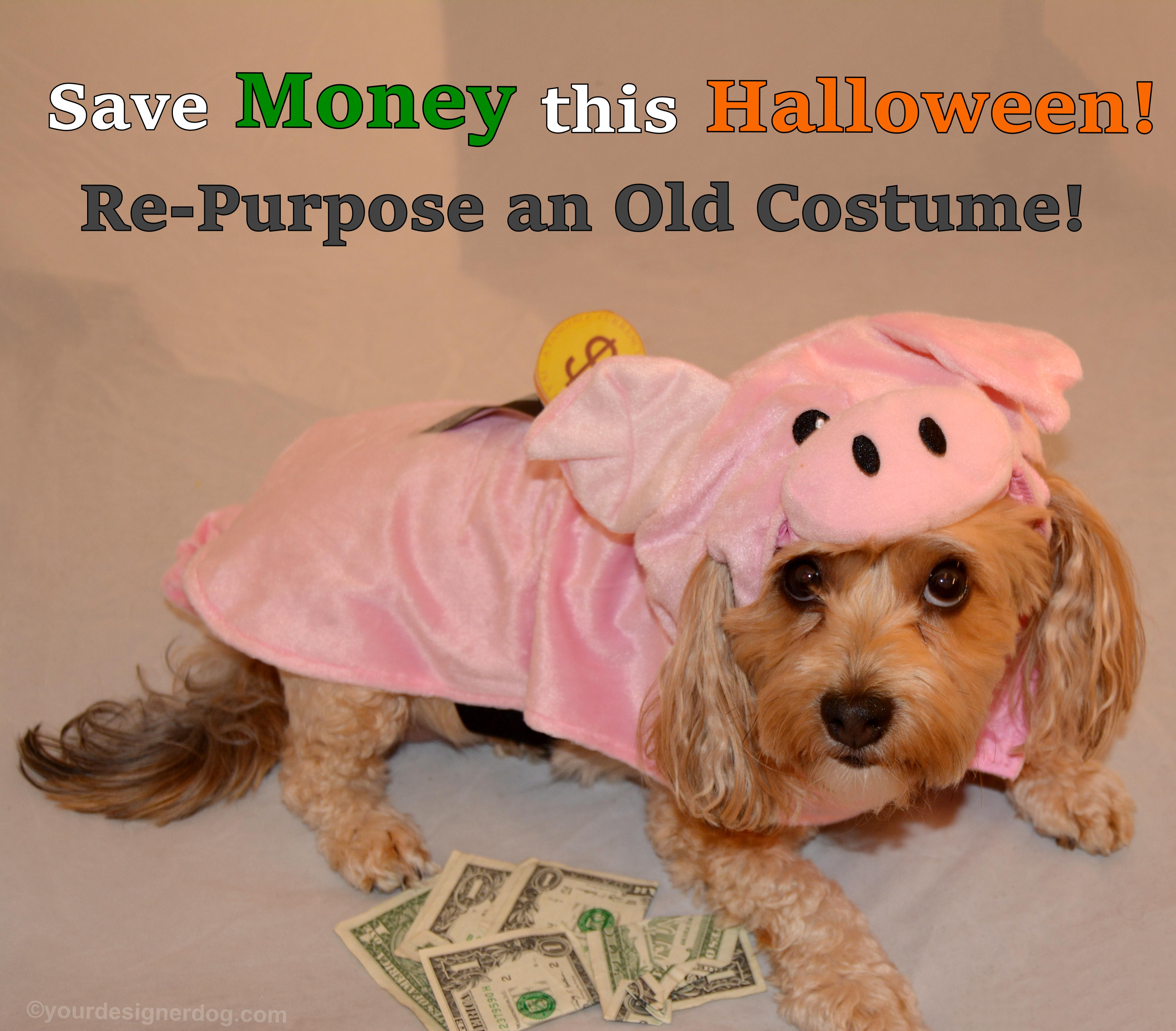 Save Money This Halloween – Re-Purpose an Old Costume!