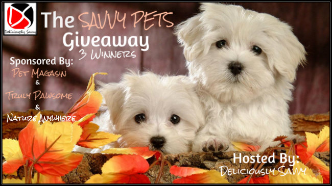 The Savvy Pets Giveaway – Ends 11/22