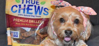 Treats + Steak = One Happy Dog! #ChewyInfluencer